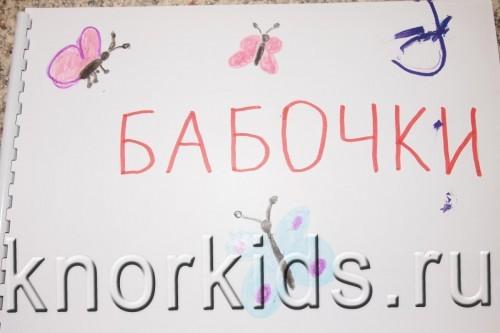 P5145207 500x333 Мир в альбошке Бабочки