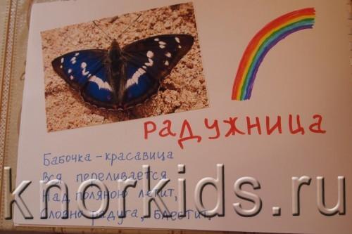 P5145213 500x333 Мир в альбошке Бабочки