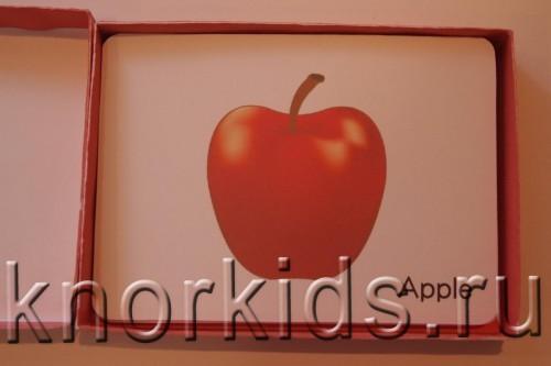P5145204 500x333 Мини карточки Овощи и фрукты