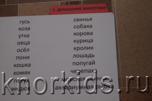 P3159439 500x333 Хранение карточек Вундеркинд с пеленок