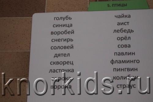 P3159440 500x333 Хранение карточек Вундеркинд с пеленок
