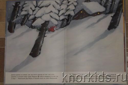 PA268826 500x333 Читательский дневник. Новогодние и зимние книги.