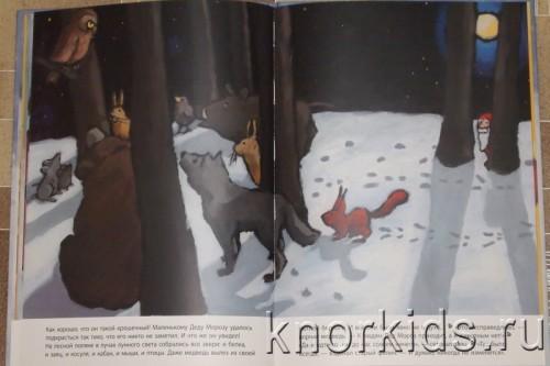 PA268829 500x333 Читательский дневник. Новогодние и зимние книги.