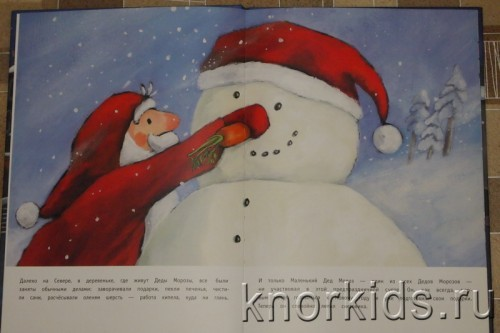 PA268842 500x333 Читательский дневник. Новогодние и зимние книги.