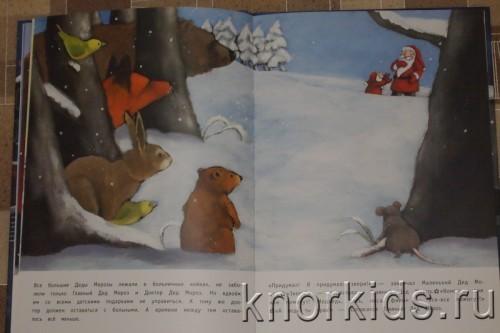 PA268845 500x333 Читательский дневник. Новогодние и зимние книги.