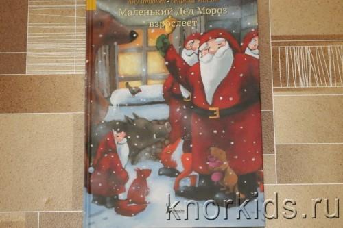 PA268849 500x333 Читательский дневник. Новогодние и зимние книги.