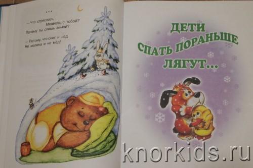 PA268869 500x333 Читательский дневник. Новогодние и зимние книги.