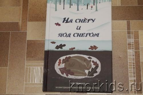 PA268909 500x333 Читательский дневник. Новогодние и зимние книги.