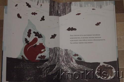 PA268911 500x333 Читательский дневник. Новогодние и зимние книги.