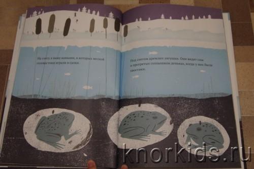 PA268913 500x333 Читательский дневник. Новогодние и зимние книги.