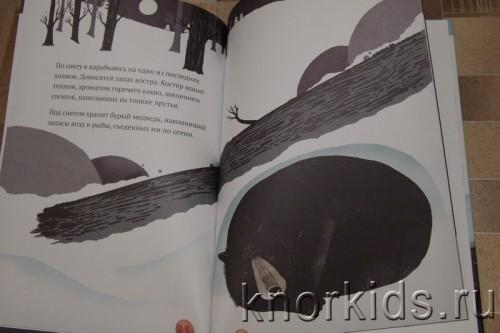 PA268914 500x333 Читательский дневник. Новогодние и зимние книги.