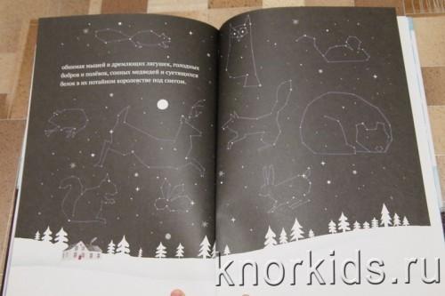 PA268916 500x333 Читательский дневник. Новогодние и зимние книги.