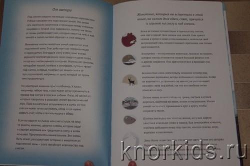 PA268917 500x333 Читательский дневник. Новогодние и зимние книги.