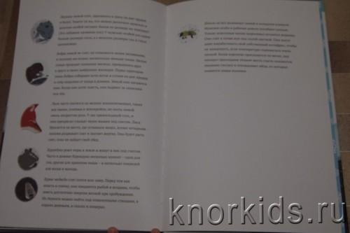 PA268918 500x333 Читательский дневник. Новогодние и зимние книги.