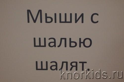 P1170864 500x333 Школа чтения. Тема 2.1 и 2.2