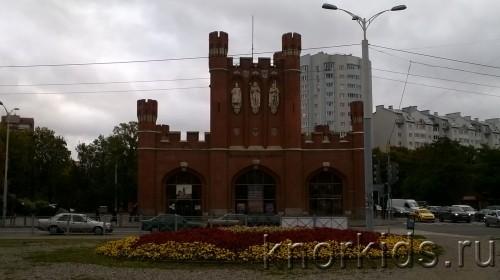 WP 20161011 09 53 38 Pro 500x280 Еще фото Калининграда